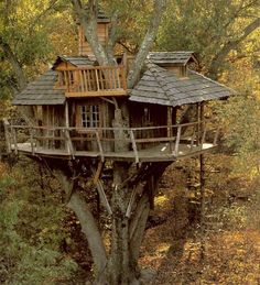 This is the house that I'm trying to design right now for my weekend estate. Tree houses have been a fascination and by GOD I'll have my own!!