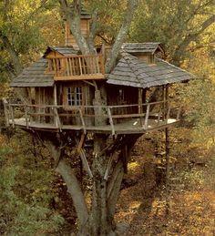 tree house wood classic