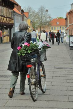 Market Day in Køge | Exploration Vacation