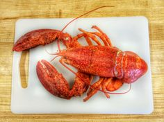 My Hands Smell Like Lobster and Clarified Butter #Travel