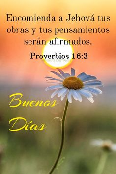 Condolence Messages, Condolences, Protection Quotes, Spanish Greetings, Jesus Christ, Religion, Believe, Spirituality, Healing
