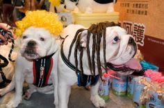 fatty & cola: we love halloween!