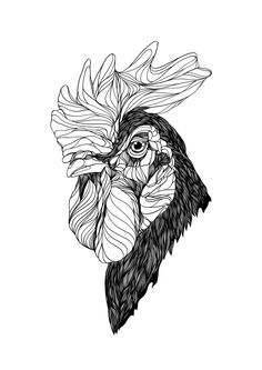 Animals by Bryan Gallardo via Behance Rooster Logo, Rooster Art, Chicken Tattoo, Animal Cartoon Video, Black Chickens, Dark Tattoo, Bird Artwork, Animal Print Fashion, Animal Sketches
