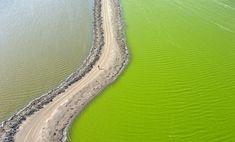 Spectacular Aerial Landscapes of Vibrant Salt Ponds in San Francisco - My Modern Met