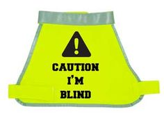 I Am Blind Reflective Dog Vests- people generally think Sparkles is just sleep walking.
