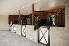 Not my color walls but love the stall back wall and space Barn Stalls, Horse Stalls, Dream Stables, Dream Barn, Equestrian Stables, Horse Barn Designs, Horse Barn Plans, Best Barns, Horse Property