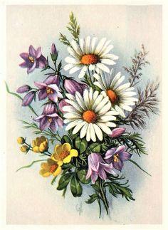 Flower Images, Flower Pictures, Flower Art, Floral Vintage, Vintage Flowers, Tole Painting, Fabric Painting, Vintage Flower Tattoo, Botanical Flowers