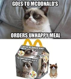 Grumpy Cat at McDonalds… I want an unhappy meal lol