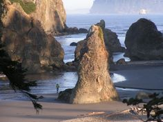 Washington State Beaches :)