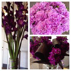 Boston Area, Glass Vase, Posts, Google, Home Decor, Messages, Decoration Home, Room Decor, Home Interior Design
