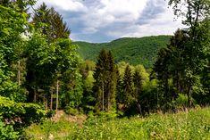 Die Aussicht im Harstal, Wald, Landschaft, aufgenommen im Mai