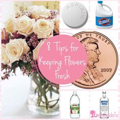 8 Tips for Keeping Flowers Fresh | GirlsGuideTo
