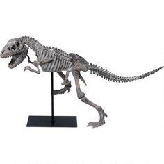 Paleo Body Statue /for my boy's room