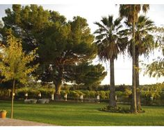 Hacienda El Roso- Garden
