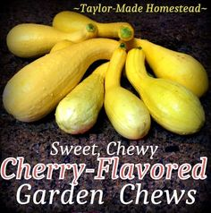 What can you do with all that garden squash? Make sweet cherry-flavored gummy snacks for your family with overgrown zucchini or squash! #TaylorMadeHomestead