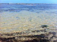 Caraiva reef crystalline water - Bahia_Brazil