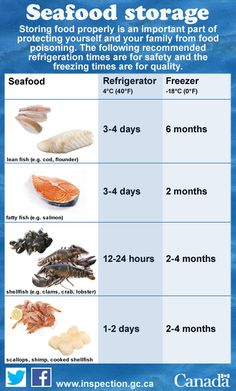 Fresh seafood perishes quickly whether in the fridge or freezer.