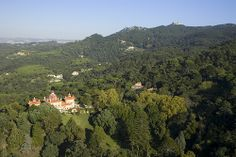 Monserrate Palace wedding venue's exotic gardens…
