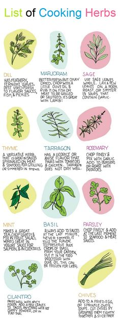 List of Cooking Herbs : Dill : Has feathery fern-like leaves. Best used fresh to flavor sauces, Fish, & Pichles. Marjoram : Better fresh, but okay dried. chop with a little olive oil & rub it on fish or meat to, be grilled or sauteed. it's great with lamb. Sage : Use sage leaves whole.…