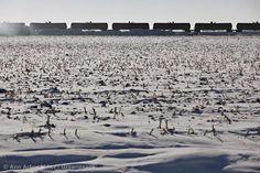 Top Ten Ways the Fossil Fuel Industry has Sucked in February '14