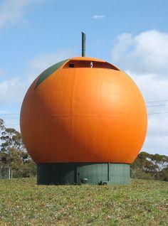 The Big Orange, Berri South Australia. A café, gift shop, and lookout tower. Australia Tours, South Australia, Australia Travel, City Of Adelaide, Lookout Tower, Kangaroo Island, Orange House, Orange You Glad, Tourist Trap