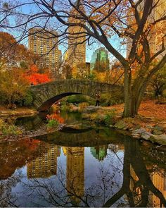 Central Park #NYC