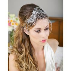 Silver Crystal Birdcage Veil, Silver Crystal Bird Cage Bridal Veil,... ($55) ❤ liked on Polyvore featuring accessories, hair accessories, rhinestone hair pins, bride hair comb, crystal crown, silver hair comb and bridal hair combs