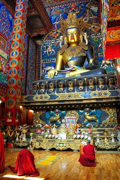Shrine in Litang Monastery, Tibet Nepal, Tibetan Art, Tibetan Buddhism, Festivals In July, Yoga Studio Design, Buddhist Temple, Buddhist Symbols, Buddhist Monk, Temples