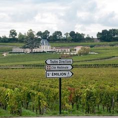 If you ever encounter these particular signs, I highly recommend turning right. Paris Packing, Tricky Questions, Visit Singapore, St Emilion, French Collection, French Classic, Paris Shopping, French Countryside, France Travel