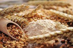 """Retrouvez la photo """"Le germe de blé"""" dans notre diaporama intitulé """"Ces 25 aliments qui font grossir sans que vous le sachiez"""" sur 750g."""