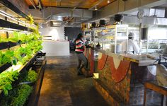 tsai design studio: moyo waterfront restaurant + urban farm