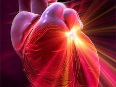 Heart || Image Source: http://www.redorbit.com/media/uploads/2011/03/76b3cfedae34787680d4ae4c9ef9c76f.jpg