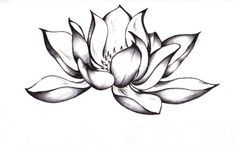 Lotus tattoo For the average person lotus flower tattoo designs are a sign that they have overcome something difficult or hard in their own life. Description from pinterest.com. I searched for this on bing.com/images