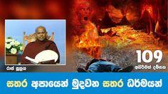 සතර අපායෙන් මුදවන සතර ධර්මයන් | Shraddha TV