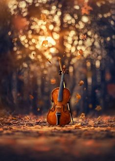 Whimsical and Dreamlike Still Life Photography by Ashraful Arefin photography dreamlike stilllife fineart toyphotography 401524123025882112 Studio Background Images, Dslr Background Images, Photo Background Images, Picsart Background, Photo Backgrounds, Photography Backgrounds, Music Backgrounds, Music Wallpaper, Fall Wallpaper