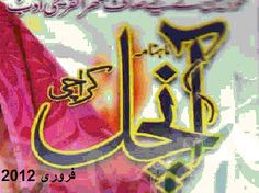 Aanchal Digest February 2012 read online or download free.