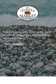 """Limitations live only in our minds. But if we use our imaginations, our possibilities become limitless.""   – Jamie Paolinetti"