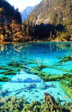 Five Flower Lake – Jiuzhaigou Valley, China