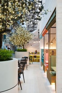 19 Photos of Ovolo, Sydney's newest hotel. Note the Harbour Bridge in the background.
