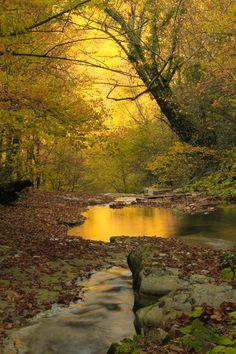 Autumn at Erfelek, Sinop, Black Sea_ Turkey