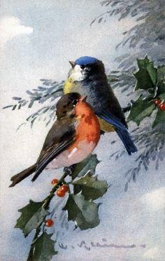 http://4.bp.blogspot.com/-UGrLyQ_PZ6I/TqhL_ZnjABI/AAAAAAAACoo/jy7yGFEzHSY/s1600/Catherine+Klein_Birds_013.jpg