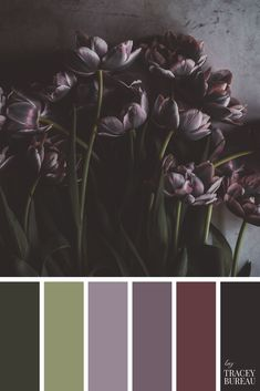 Purple Flowers Flat Lay | Color Palette | Color Scheme | Green & Purple | Color Palette Inspiration