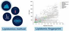 #AChem: Holistic Lipidomics of the Human Gut Phenotype Using Validated Ultra-High-Performance Liquid Chromatography Coupled to… #MassSpec