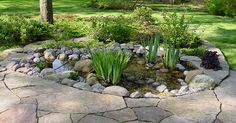Small Backyard Ponds | image via wiseacre-gardens.com