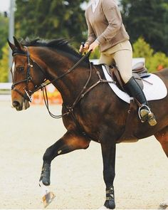 Ogilvy Equestrian: I know that I love my ogilvy half pad! Definitely recommend.