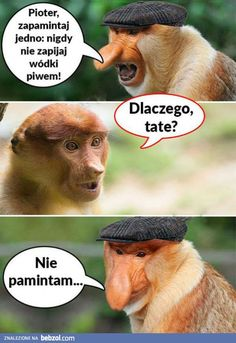 Funny Mems, Meme Lord, Dory, Best Memes, Fnaf, Funny Animals, Haha, Cartoon, Movie Posters