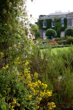 Travel to the scenic sea inlet of Strangford Lough, along Ireland's sparkling northern coast, and experience the hidden wonders of the legendary Mount Stewart gardens.