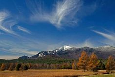 Julie Goodblood Clark: Whiteface in the morning sun. Taken from Rt 86. #Adirondacks #dacknet