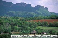 Landscape of the valley with their antlers, Viñales. Pinar del Rio