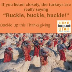 Our Thanksgiving Themed Buckle Up Message
